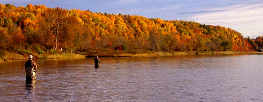 Fly Fishing Atlantic Salmon Miramichi River fishing Reports